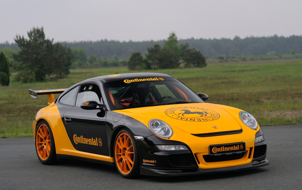 Driving Performance - Porsche Static,