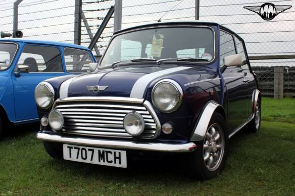 Blue Mini Classic